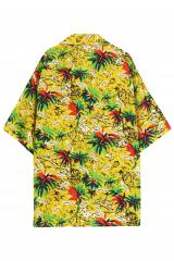Cuba Palm